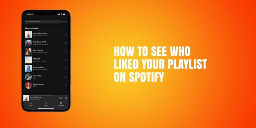 How To See Who Liked Your Playlist On Spotify – Step-By-Step Guide