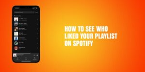 how to see who liked your playlist on spotify